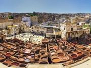 Vign_fes_guided_medina_Tour